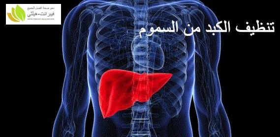 مقدمة عن تنظيف الكبد من السموم