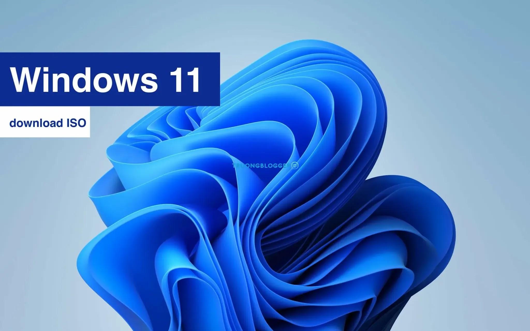 Download ISO Windows 11 AIO build 22000.160 (KB5005189) x64 DEV