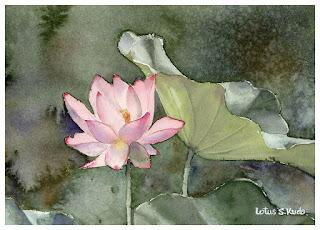 Lotus Watercolor 蓮の花 水彩画