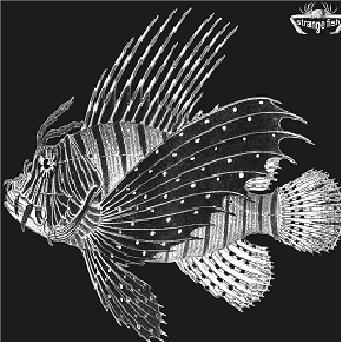 New Prog Releases Various Artists Quot Strange Fish Two Quot