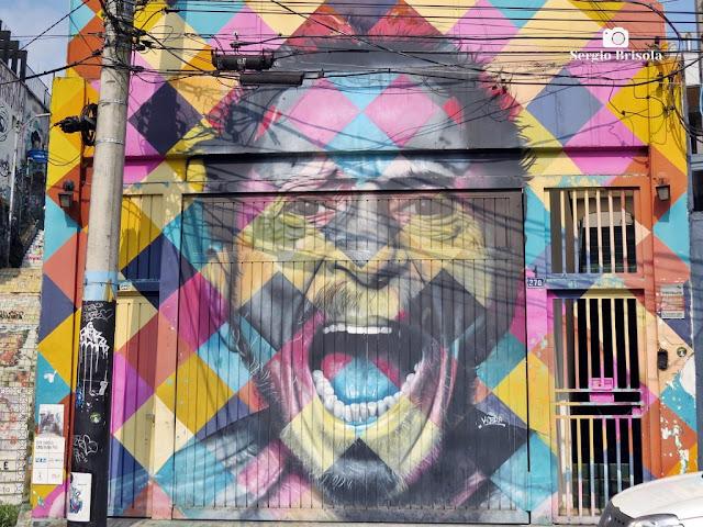 Close-up do Mural Grafite Tom Zé - Jardim das Bandeiras (Vila Madalena) - São Paulo