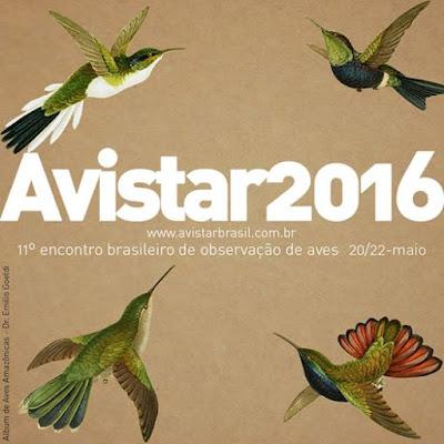 Avistar 2016, avistar, instituto Butantan, observação de aves, passarinhar, observatório de aves instituto butantan, Tocantins, aves, birding, birdwatching, vem passarinhar