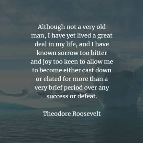 Famous quotes and sayings by Theodore Roosevelt