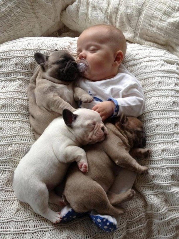 Baby with Puppies
