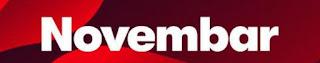 14-mesec-novembar-baner-logo-slovima-ispisana-slika