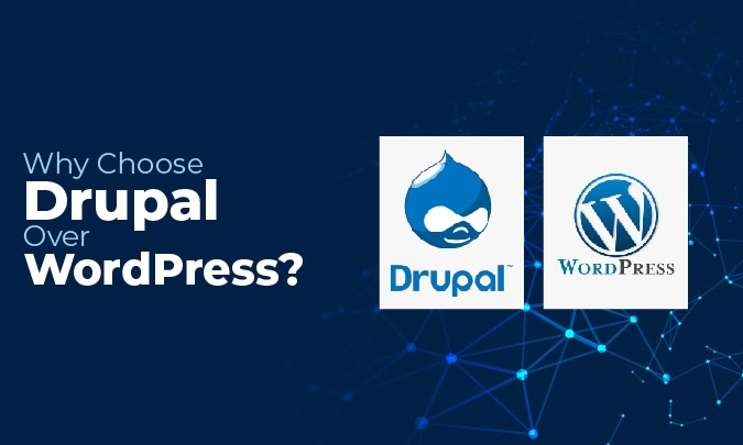 Why Choose Drupal Over WordPress? Website Development Agency