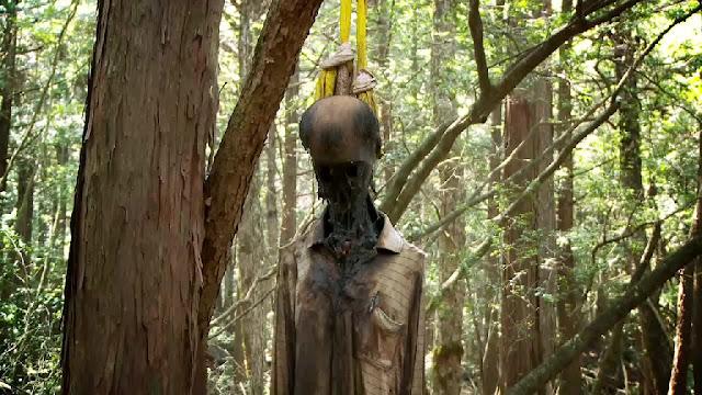 hutan Aokigahara di jepang hutan yang sering dijadikan tempat bunuh diri