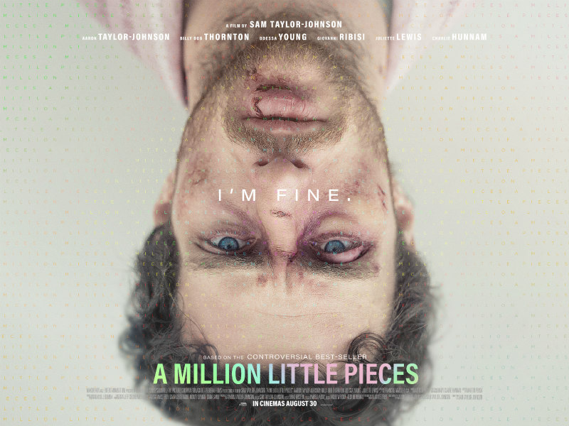 a million little pieces poster
