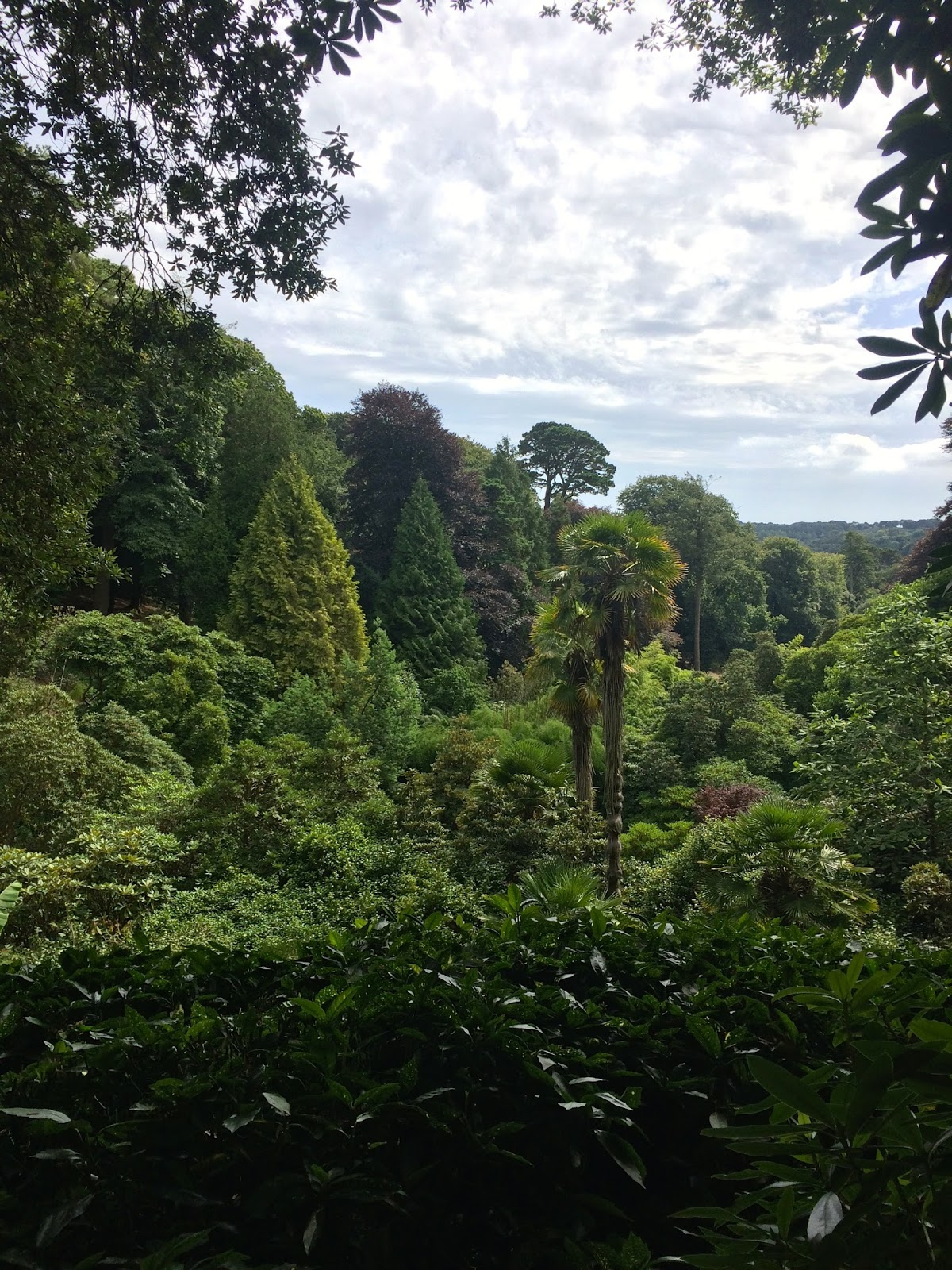 Trebah Gardens, Things to do in Cornwall, UK travel bloggers