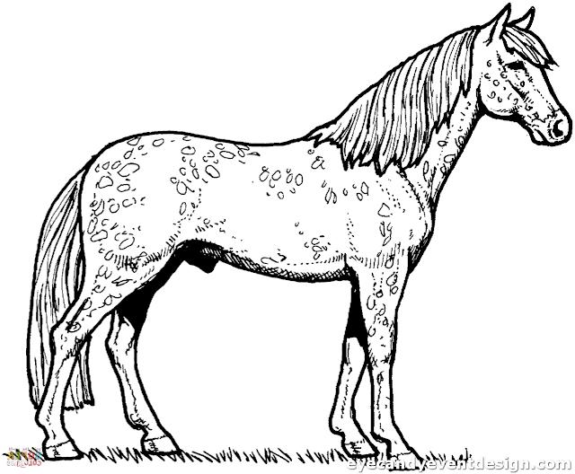 Ausmalbilder Zum Ausdrucken: Ausmalbilder Pferde Mit Reiter