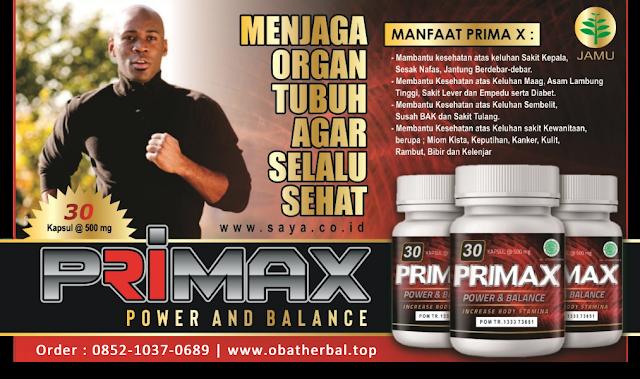 primax, prima-x, obat herbal primax, obat herbal alami, primax herbal, obat herbal primax,