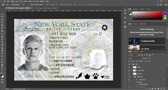 New York Driver License Editable PSD Template