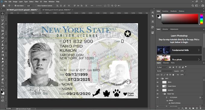 New York Driver License Editable PSD Template