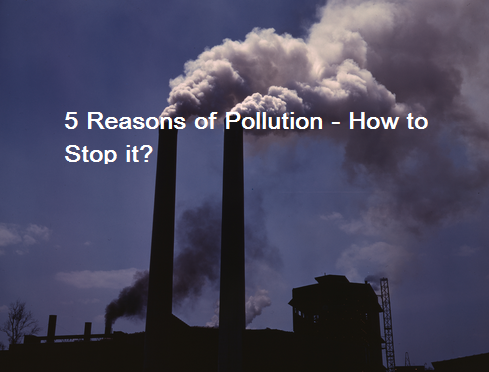 Five Reasons of Pollution - How to Stop It?