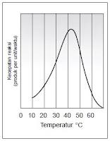 Grafik Hubungan Suhu dan Enzim
