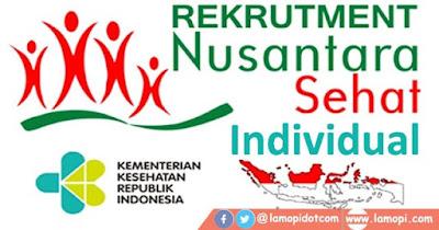 Rekrutmen Nusantara Sehat Individual