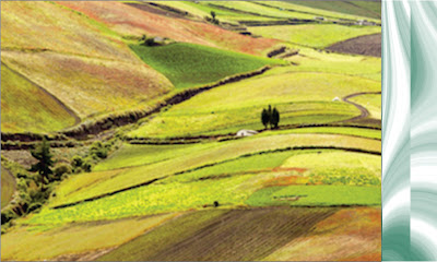 konsep-dasar-investasi-tanah