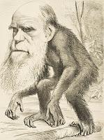Charles Darwin, evolutietheorie