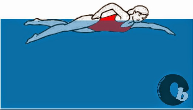Cara cepat bisa belajar berenang,belajarberenang