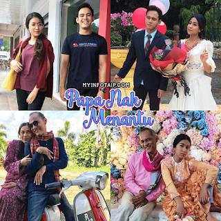 Sinopsis Drama Papa Nak Menantu (TV3)