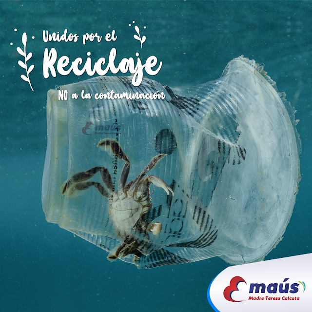 Unidos por el reciclaje