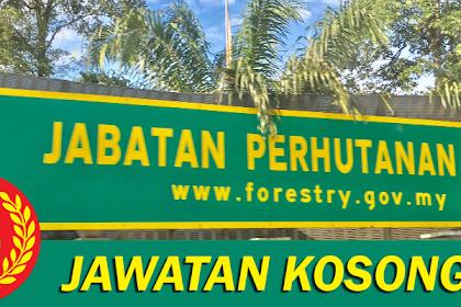 Jawatan Kosong Terkini Jabatan Perhutanan Negeri Kedah | Tarikh Tutup: 15 Julai 2019