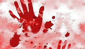 બલુચિસ્તાનમાં પાકિસ્તાની મહિલા પત્રકારને ગોળી મારી હત્યા, પતિને શહિનાન ફેમશ થાય તે પસંદ ન હતુ.