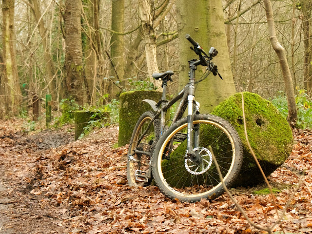 cycling woods bollards moss
