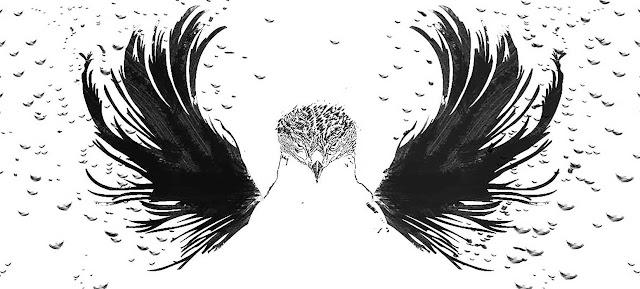 BirdmanBlack