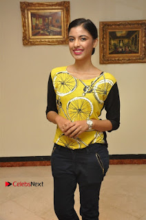 South Indian Celebrities Pos at Love For Handloom Collection Fashion Show  0016.jpg