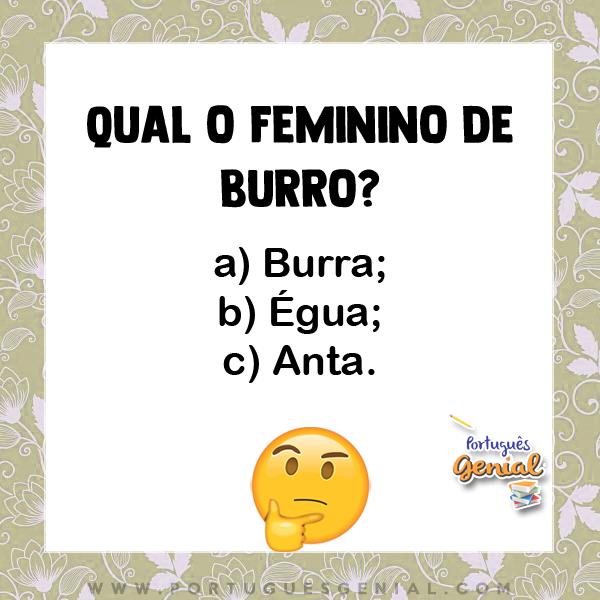 Feminino de burro - Qual o feminino de?