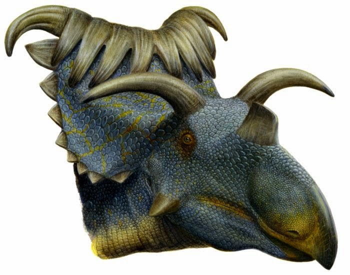 Kosmoceratops Clown Face