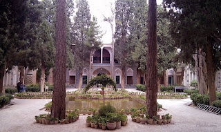 The trees in the shrine of Shah Nimatullah Vali.
