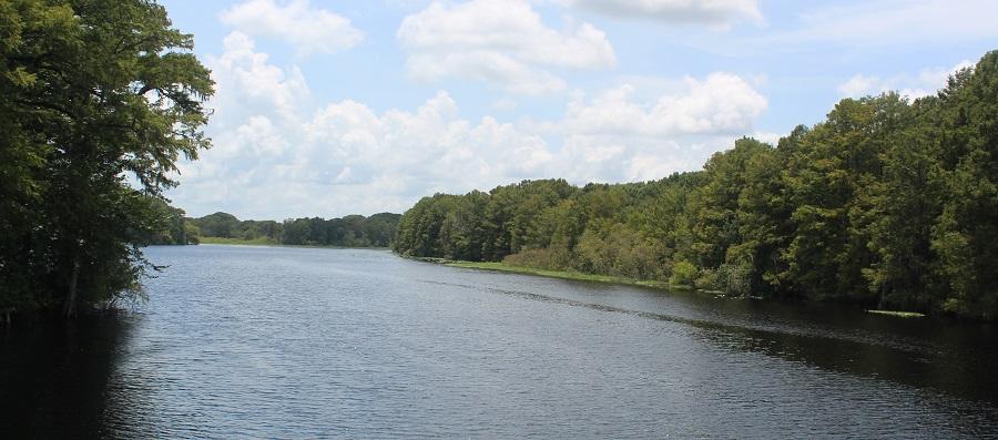 Withlacoochee River entre los condados Sumter y Citrus