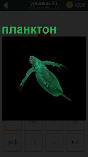 Живой организм планктон зеленого цвета плавающий в темной воде