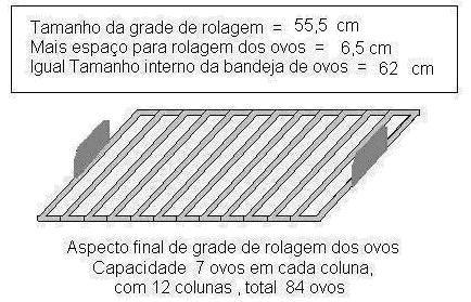 COMO CRIAR GALINHAS CAIPIRAS: MANUAL PARA CONSTRUÇÃO DE