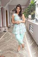 Nikki Galrani at Prema leela pelli gola trailer Launch ~  Exclusive 076.JPG