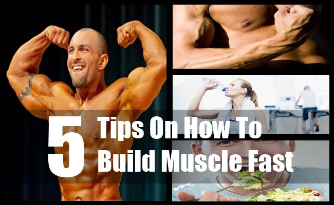 Gain Muscle Fast Food