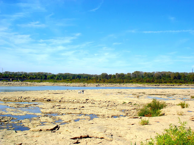 Falls of the Ohio State Park Fossil Beds