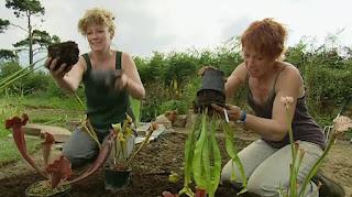 Chris and Carol plant plants around the pond