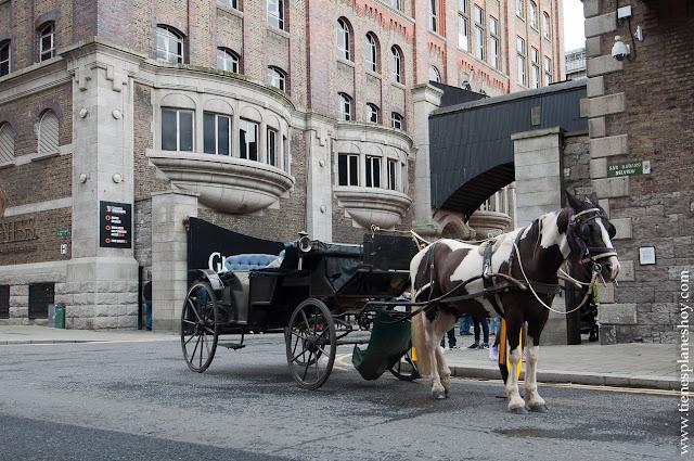 Guinness Storehouse Dublin Irlanda
