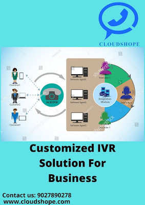 Customized IVR Solution for Business
