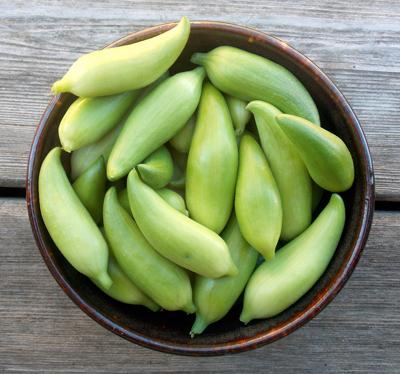Exotic Fruits of Ecuador