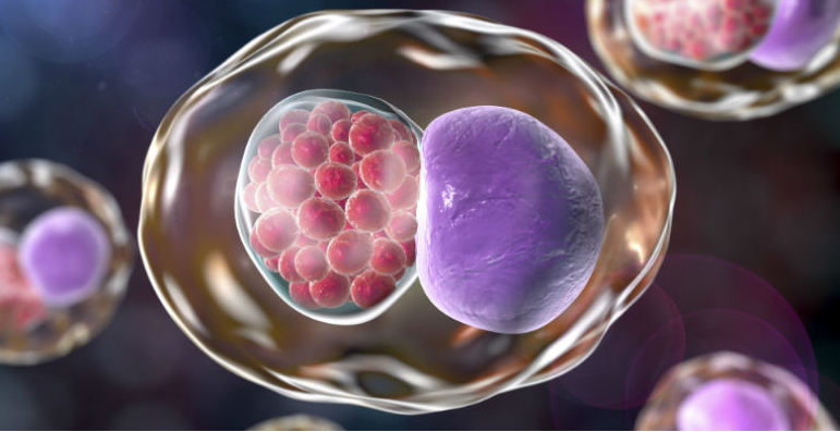 Chlamydia Treatment and Prevention in Pregnancy
