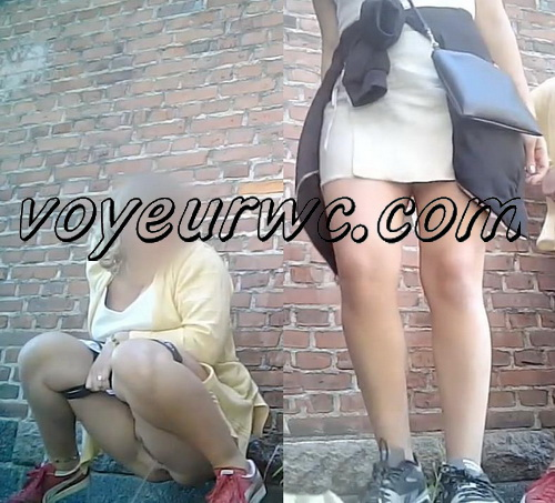 Girls peeing at a public festival voyeur (Public Piss Poster 16)