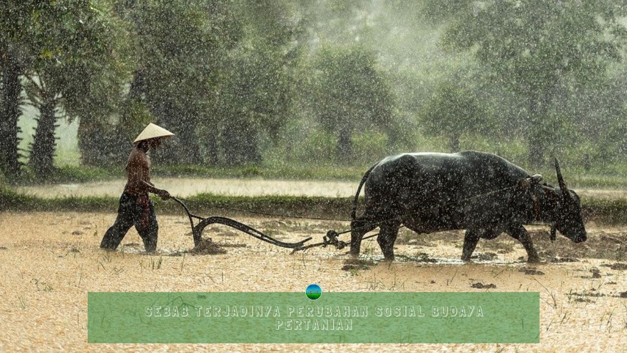 Sebab Terjadinya Perubahan Sosial Budaya Pertanian