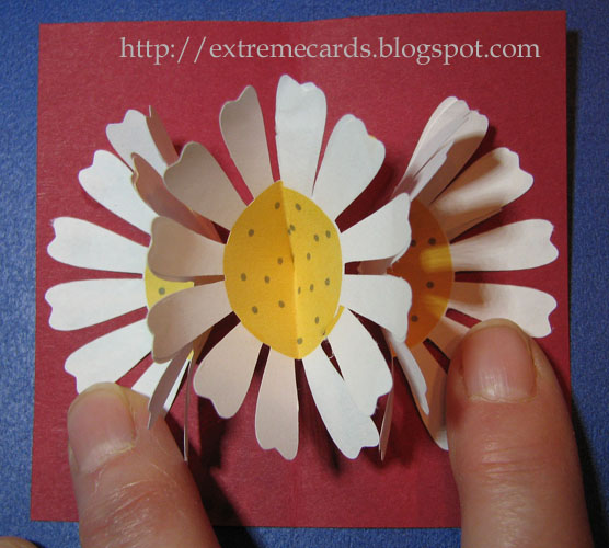 Extreme Cards and Papercrafting: Three Flower Pop Up Card