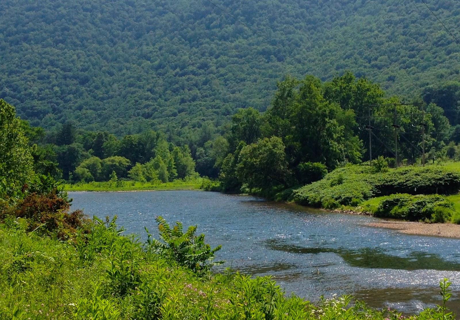 Rail Trail Guidebook Captures Essence Of Pine Creek Valley