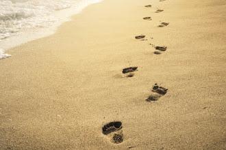 Elke reis begint met één enkele stap.