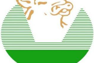 Lowongan Kerja PT. Great Giant Livestock  (GGPC)